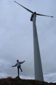 mcevoy-olive-oil-windmill